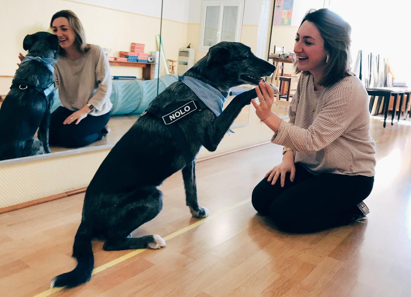 Anna BONAURE Psychomotricienne avec Nolo, chien médiateur Love Dogs